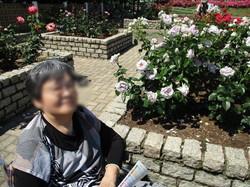 3 白色のバラ.JPG