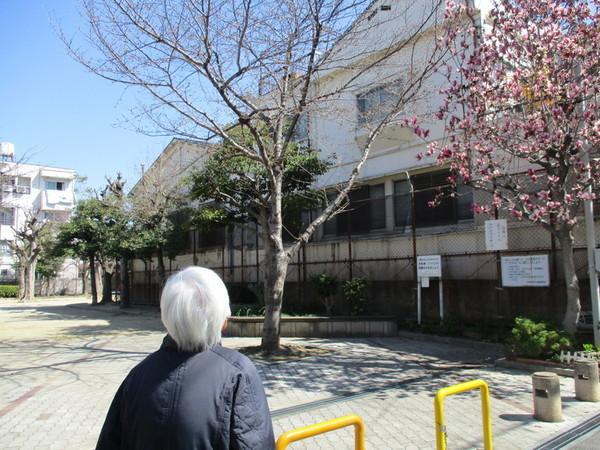 ①「桜はまだまだやね~。」.jpg