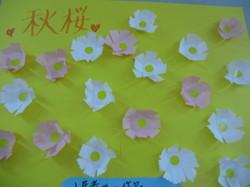 ⑫秋桜.jpg